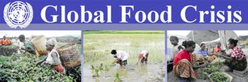 Global_food_crisis