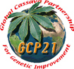 Global Cassava Partnership for Genetic Improvement (GCP21)