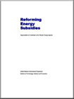Reforming Energy Subsidies: Opportunities to Contribute to the Climate Change Agenda