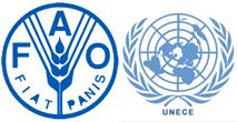 FAO UNECE