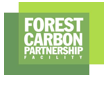 Forest Carbon