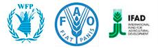 WFP FAO IFAD