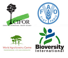cifor-fao-icraf-bioversity
