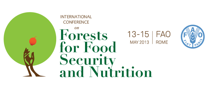 forests-for-food-security-and-nutrition