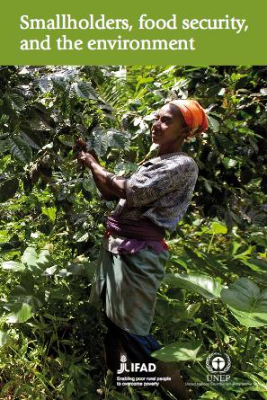 smallholders_report
