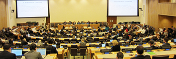 Fifth Session of the UNGA's OWG on SDGs