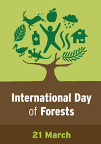 international_forests_day_21_march