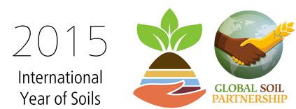 year-soil-global_soil