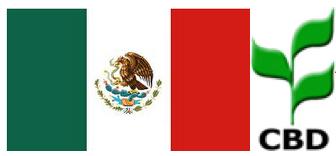 mexico_cbd