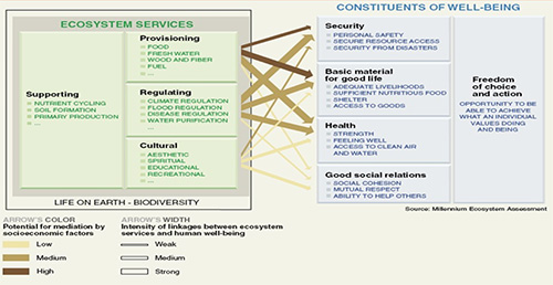 cosystem-Services-and-Human-Well-Being