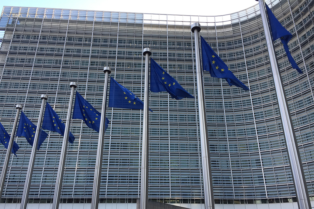 EU Strategy Seeks to Step up Global Engagement on Climate Adaptation | News | SDG Knowledge Hub | IISD - IISD Reporting Services