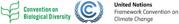 CBD - UNFCCC