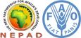 NEPAD-FAO