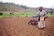 FAO soil partnership