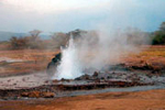 Geyser spewing super hot water at Lake Bogoria, Kenya Lake System in the Great Rift Valley