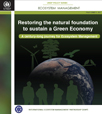 Restoring the Natural Foundation to Sustain a Green Economy